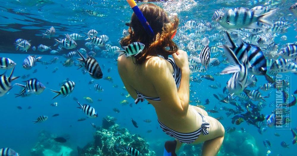 diving-foto-36